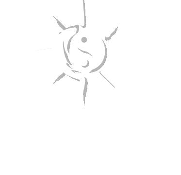 logo footer centro de terapias alternativas Zubisalud